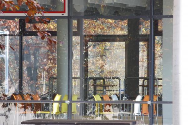 Architektur, Glas, Görlitz, Herbst, Ingenieurschule, Oberlausitz, Schlesien